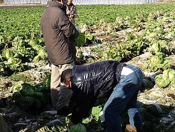 三里塚反対同盟2011新年デモ解散地点の市東さんの畑にて
