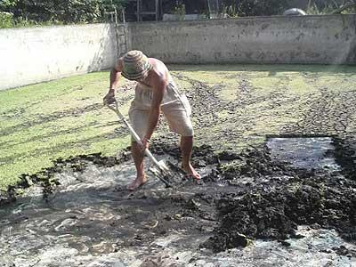 木の根ペンション プール再開作業
