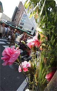 祇園暴走、原因不明のまま1ヵ月