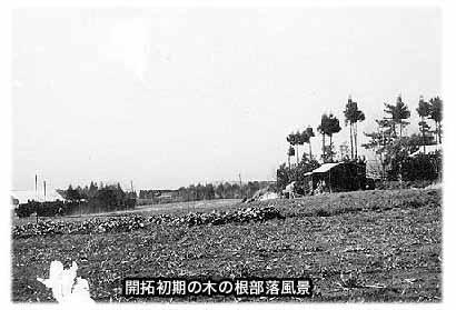 開拓初期の木の根部落