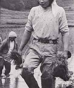 三里塚闘争・農作業