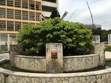 沖縄国際大学ヘリ墜落現場