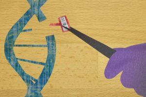 ゲノム操作食品学習会