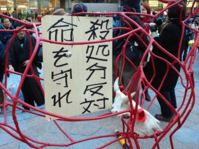 3・11『反原発福島行動'14』