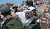イスラエル、国際的要求にも関わらず入植活動を再開