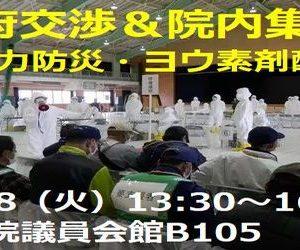 <院内集会&政府交渉>原子力防災・安定ヨウ素剤配布問題