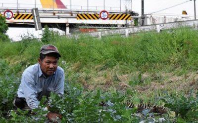 21世紀になってから(!)新しく土地収容の対象とされた市東孝雄さんの農地
