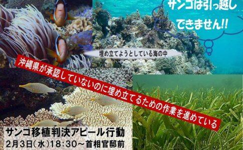 サンゴは引っ越しできません!! 辺野古サンゴ移植判決アピール行動