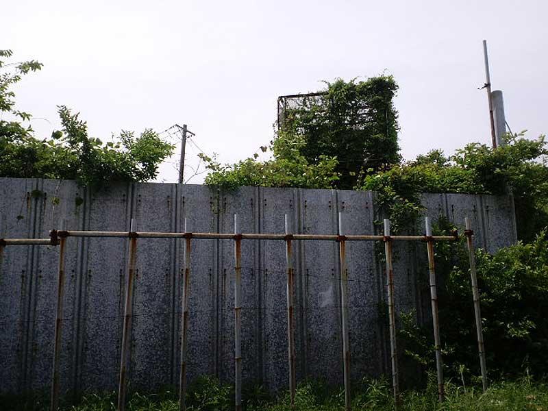三里塚・横堀現地集会とデモ 12